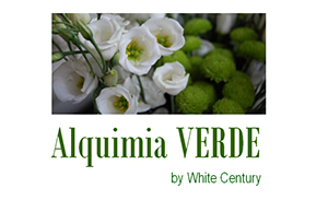 Alquimia verde el puchero de plata catering